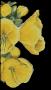 Logo de EHPAD - Les Molenes